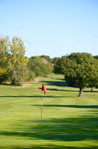 A view of the 3rd hole at Chingford Golf Course on a sunny afternoon
