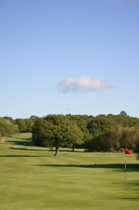 Chingford GC Image 9