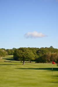A view over the 9th hole at Chingford Golf Course on a bright sunny day